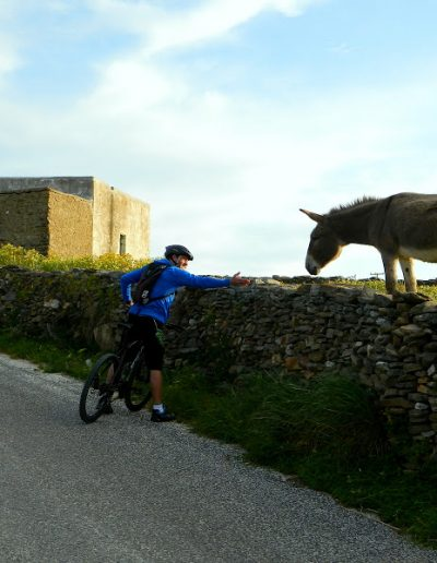 Mountain Bike Tours Paros